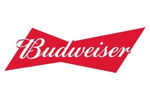 https://arubatrading.com/wp-content/uploads/2020/10/logo-beer-budweiser-aruba-trading-300x200.jpg